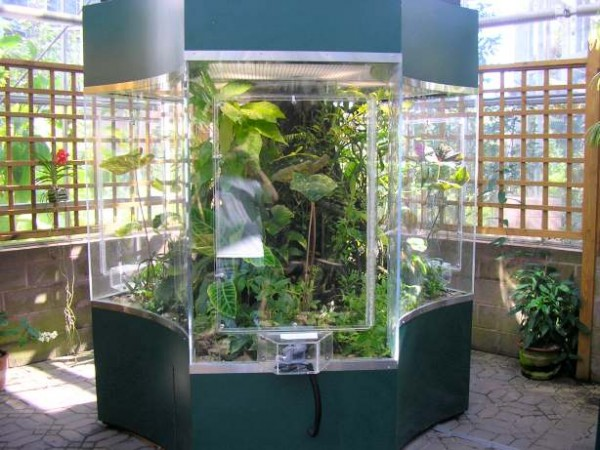 Amphibian Care Gt Gt Amphibian And Reptile Information