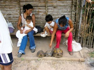 Two women and kids with three tortoises near their feet